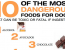 10 of the Most Toxic Foods for Dogs [PLEASE SHARE]