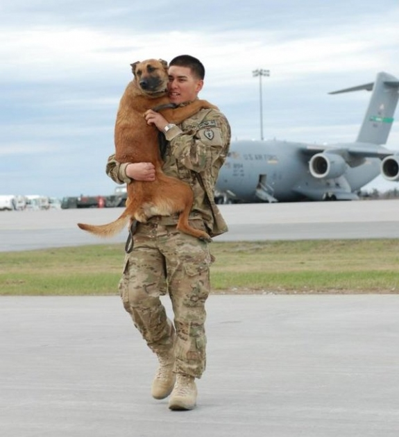 Popular Soldier Army Adorable Dog - 06  You Should Have_626241  .jpg