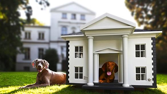 Dog Mansion House Biggest In The World