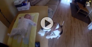 This dog does something so unbelievable, this mother had to record it!
