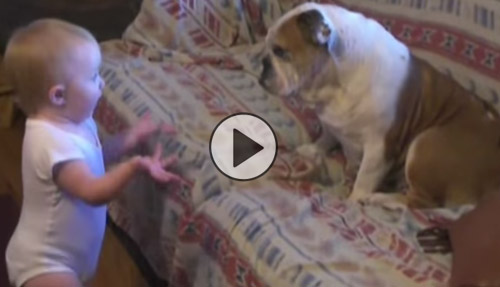 Cutest Argument Ever Erupts Between Toddler And English