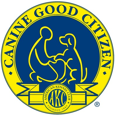 Tricks To Passing The Akc Canine Good Citizen Test