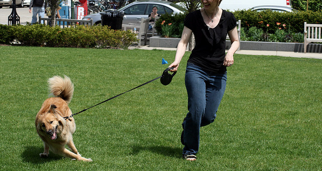Dog Walking: What Every Dog Owner SHOULD Do (but Probably Doesn't)