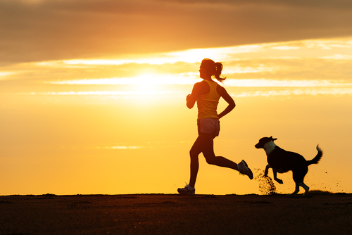 Why Dogs Make Great Workout Buddies!