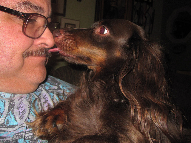 If nothing else, we are sure these participants will be in better moods. Who wouldn't be after getting a kiss from a dog? Image source: @TonyAlter via Flickr