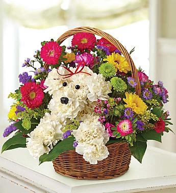 Image source: 1800flowers.com