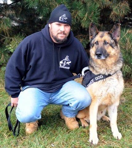 military dog charity