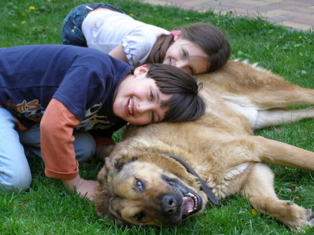 A boy and a girl lean their heads against a dog laying on grass.