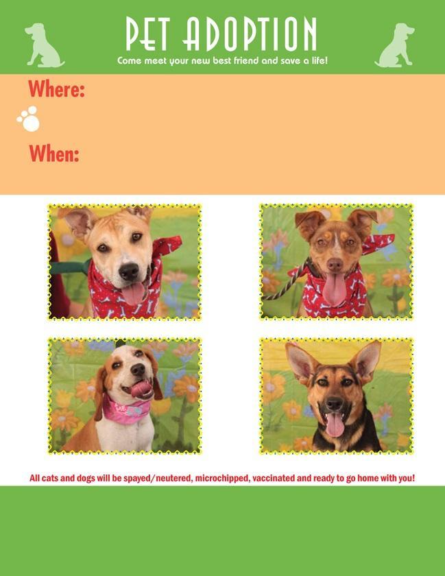 Adoption.Flyer.09222009.LowRes