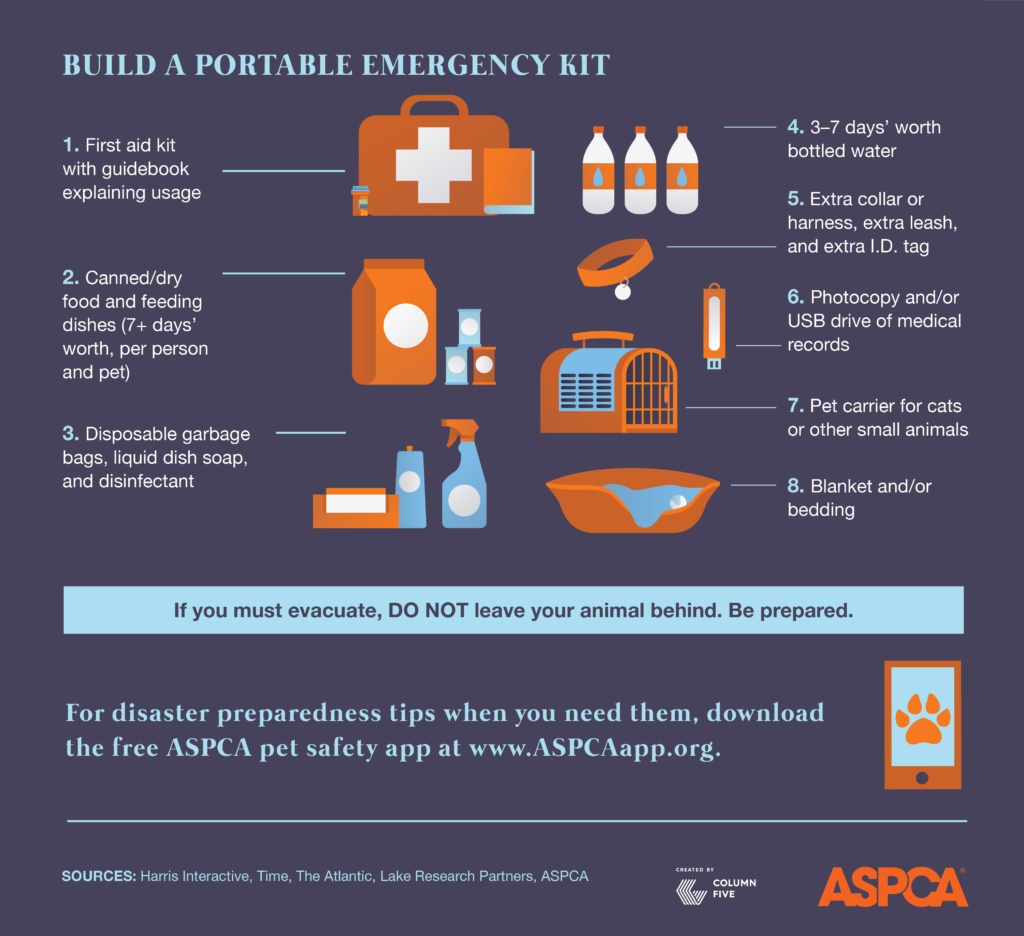 how to prepare for a tornado before during and after