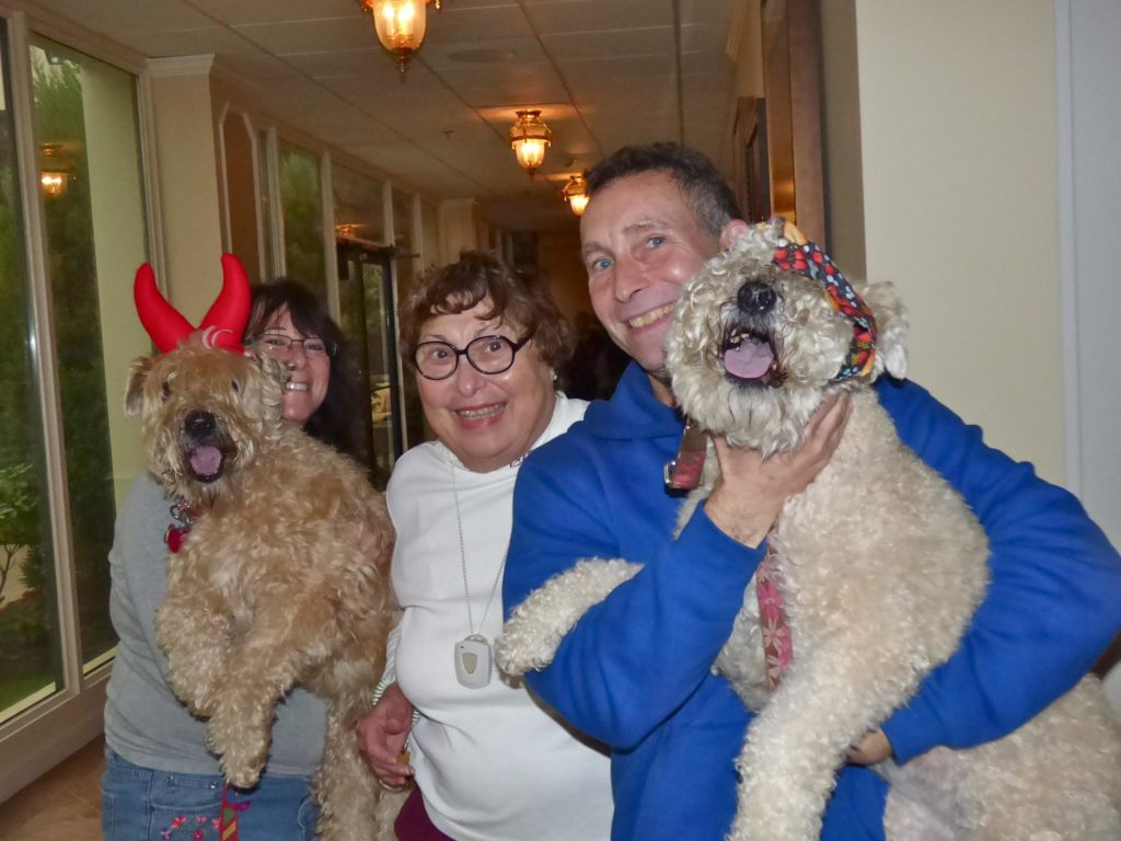 Spring Hill Pawfest. Image source: Spring HIlls Senior Communities