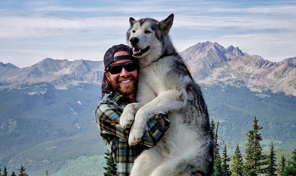 This Man S Wolf Hybrid Rarely Sets A Paw Indoors The