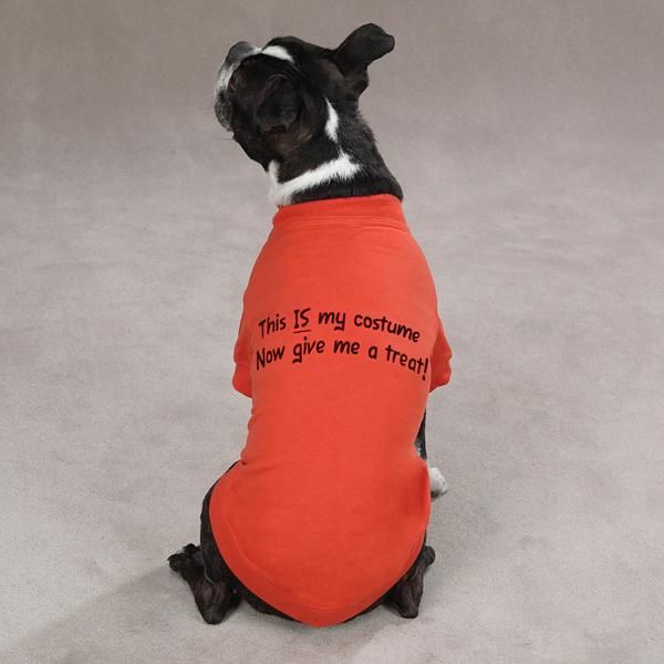 Dog Halloween T Shirts.Dog T Shirt T Shirt For Dogs Custom Dog T Shirt Funny Dog Tee Tank Top For Dogs Dog Shirts Pet Clothing Pet Apparel Hand Over The Treats Pet Clothing Accessories Shoes Pet Supplies