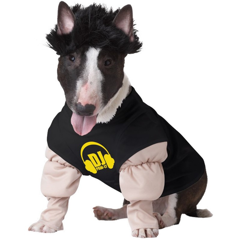 5 pauly d the new definition of gtl u2013 games treats and love photo source dog halloween costume shop