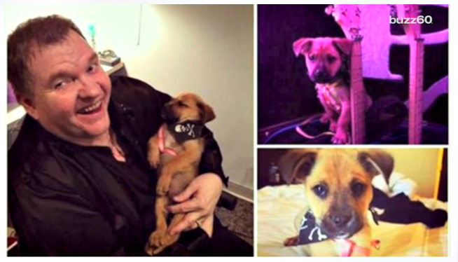 Meatloaf Rescues Puppy From Dumpster While On Tour