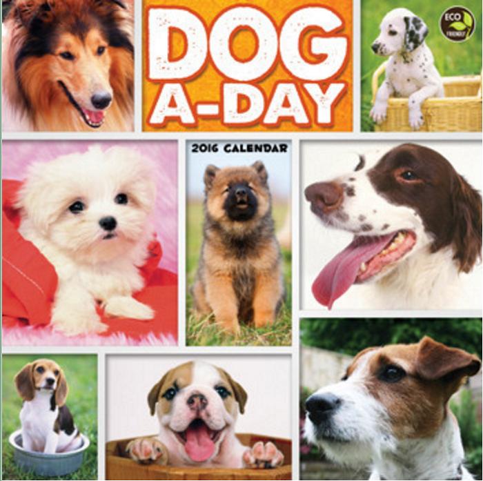 13 dogaday