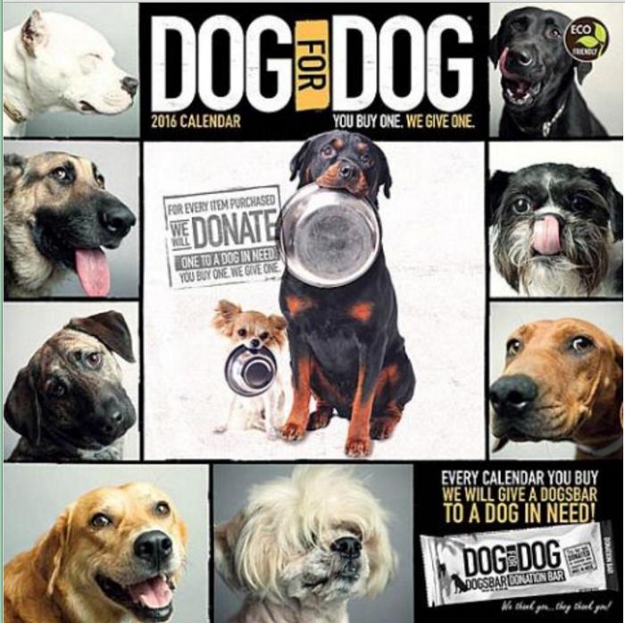 15 dog4dog calendar