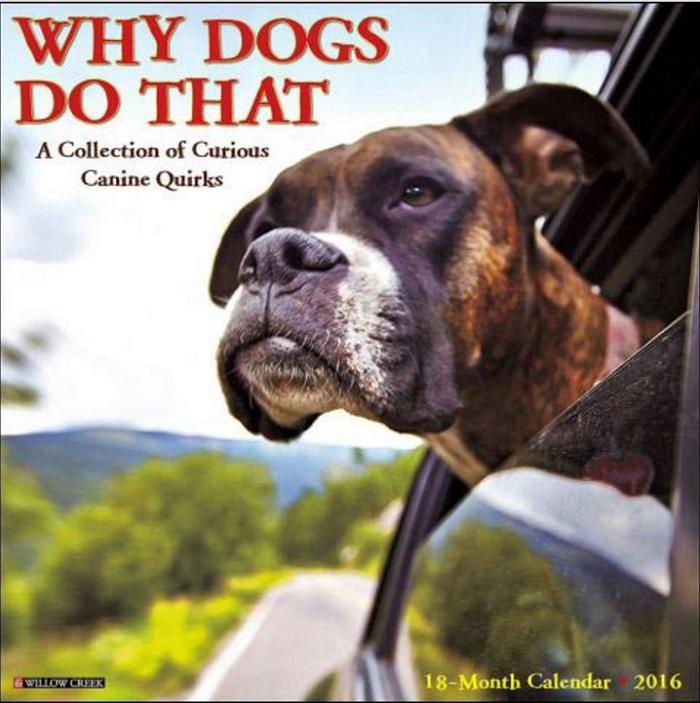 16 whydogsdothat calendar