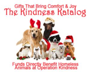 a5 Kindness Katalog