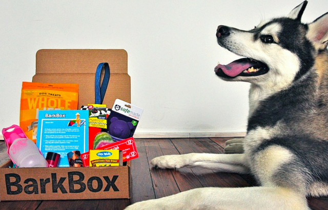 12 Gifts For The Crazy Dog Lover In Your Life – iHeartDogs.com