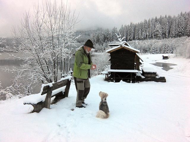 a2 winter-1039008_640