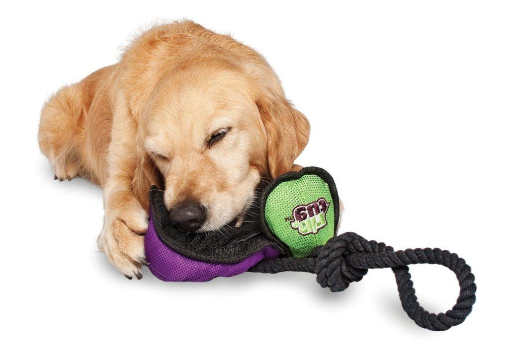 Dog Boredom Buster Toys Uk