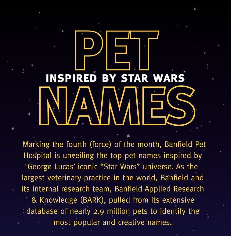 May the Fur Be With You: Banfield Pet Hospital Unveils Most Clever and Most Popular Star Wars-Inspired Pet Names (PRNewsFoto/Banfield Pet Hospital)