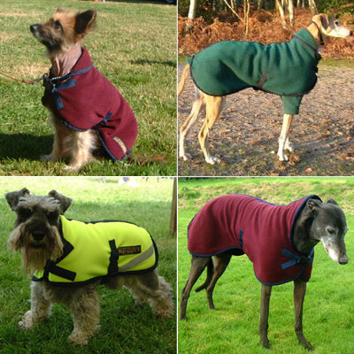 The 10 Best Winter Coats To Keep Your Dog Warm This Winter