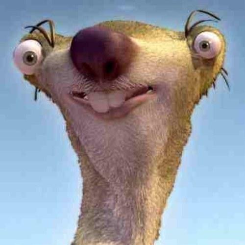 Sid The Sloth Doppelganger Dog Is An Internet Sensation ...