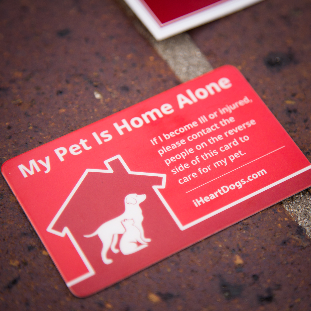 """2-Pack """"My Pet Is Home Alone"""" Wallet Cards – iHeartDogs.com"""