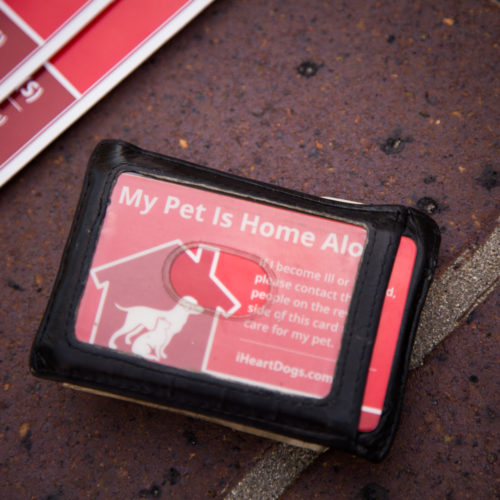 "Free 2-Pack ""My Pet Is Home Alone"" Wallet Cards"