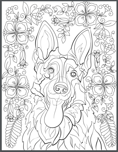 German Shepherd Adult Coloring Book Page