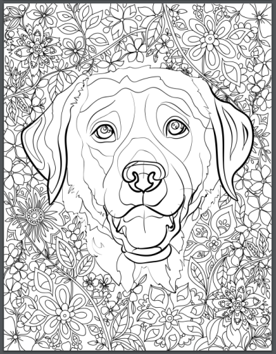 De Stress With Dogs Downloadable 10 Page Coloring Book For Adults - pointer animal coloring pages