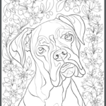 Boxer Adult Coloring Book Page