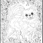 Chihuahua Adult Coloring Book Page