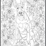 Doberman Pincher Adult Coloring Book Page
