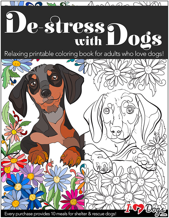 De Stress With Dogs Downloadable 10 Page Coloring Book For Adults Who Love Print Instantly IHeartDogs