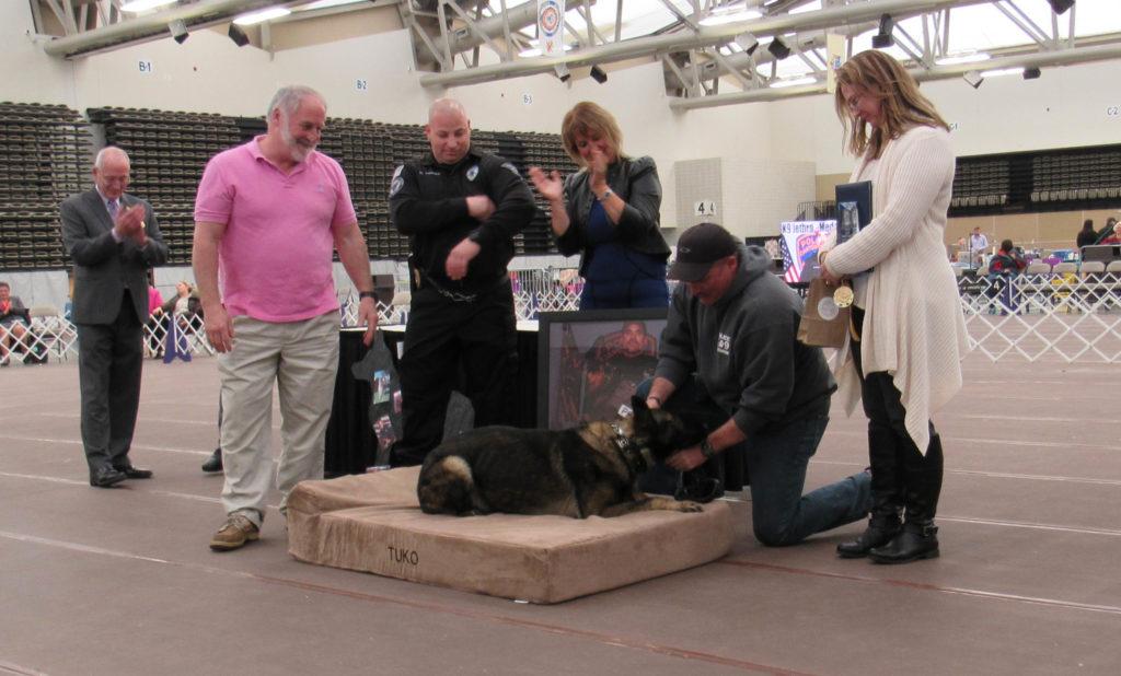 Tuko tests out new Big Barker bed. Image source: Big Barker