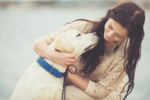 14 Issues That Each Particular person Who Loves Their Canine Has Carried out