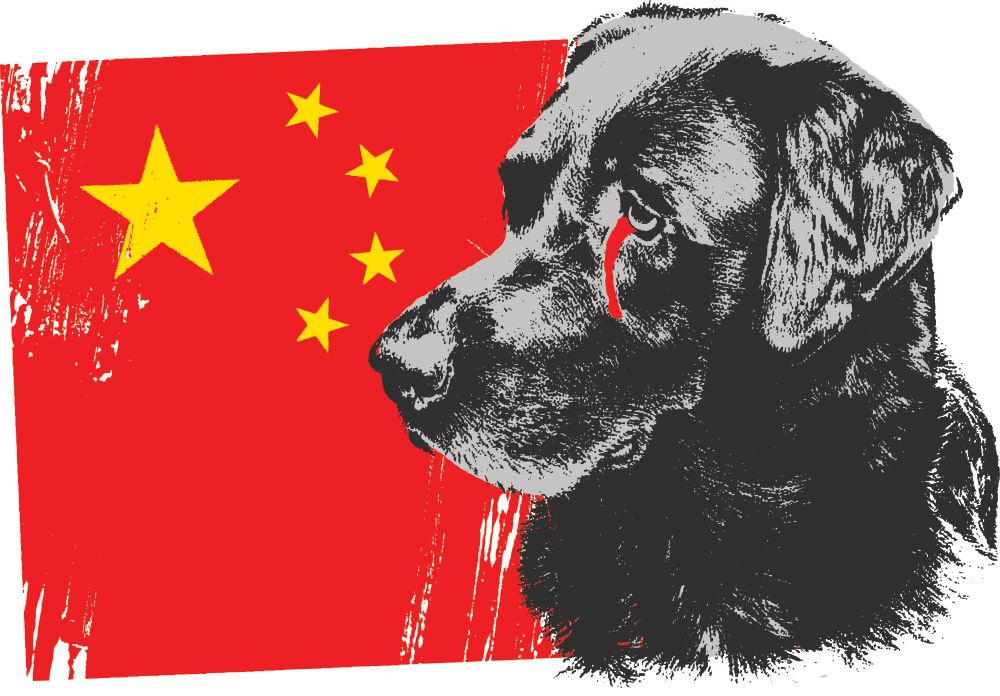 Stop Dog And Cat Meat Eating
