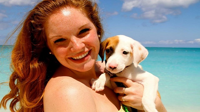 Check Out This Island Where You Can Hangout And Play With Adoptable Puppies