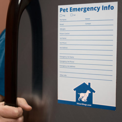 Pet Emergency Info Magnet
