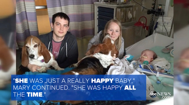Family Dogs Brought To Hospital To Comfort The Baby In Her Final Moments