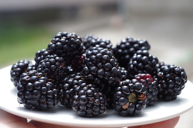 dc4 blackberries-1045728_640