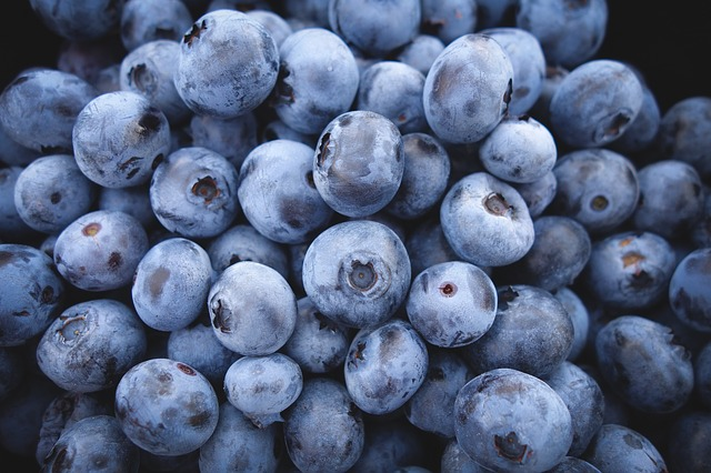 dc5 blueberries-690072_640