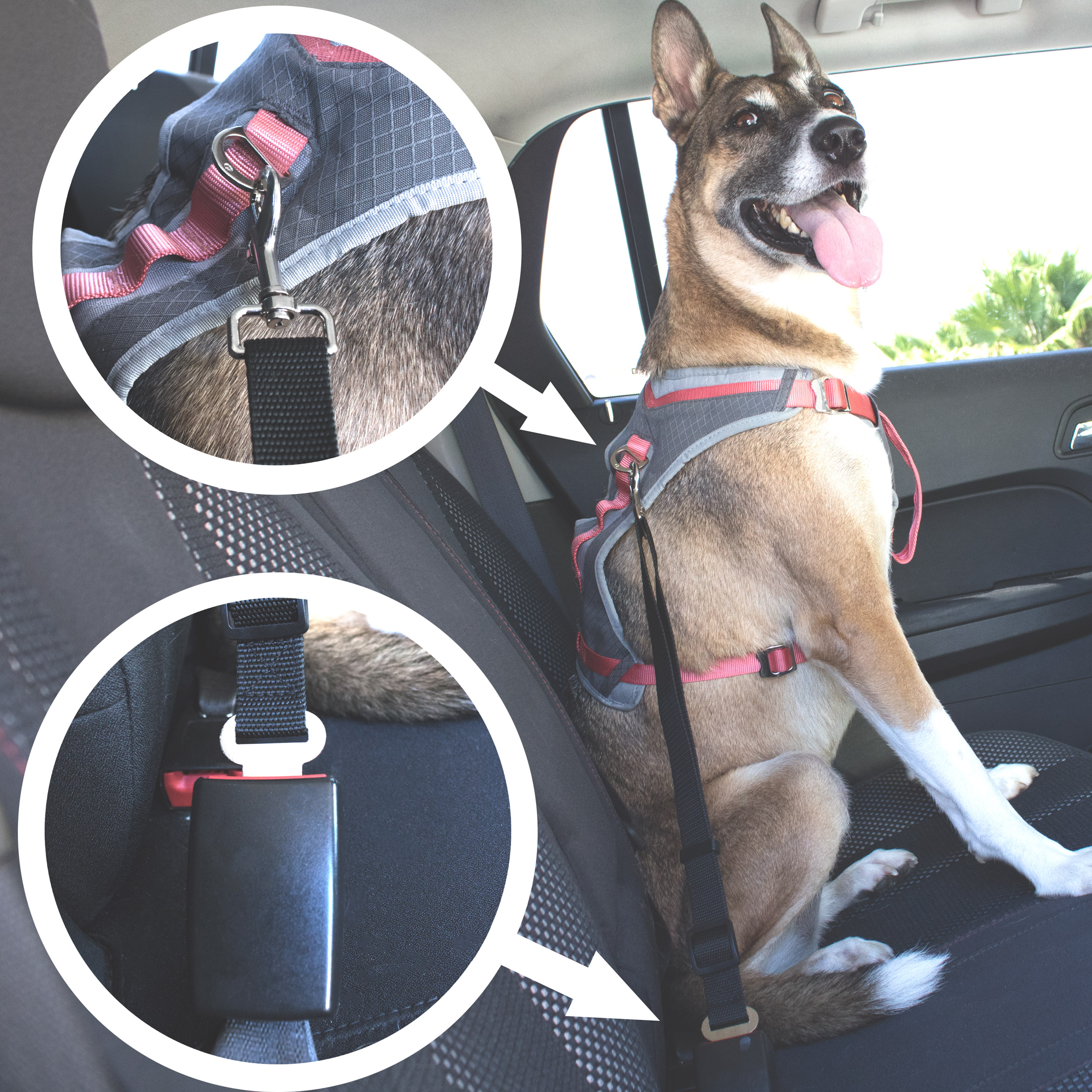 heavy duty adjustable dog seat belt for use with your dog s harness. Black Bedroom Furniture Sets. Home Design Ideas