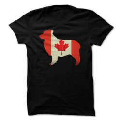 American Staffordshire Terrrier Canada
