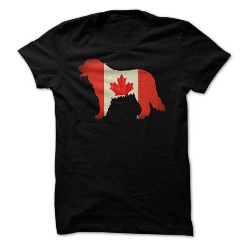 Bernese Mountain Dog Canada