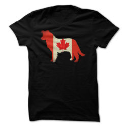 Border Collie Canada