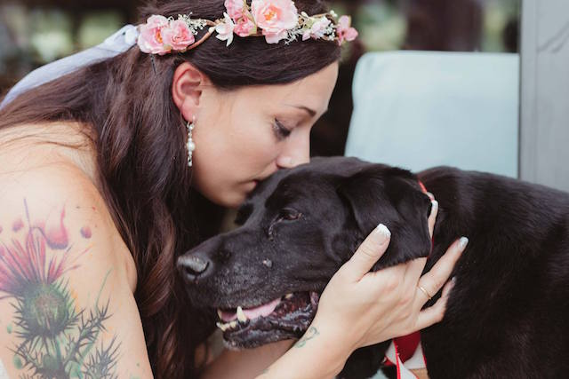 Dying Dog Carried Down The Aisle To Be By His Human On Her Wedding Day
